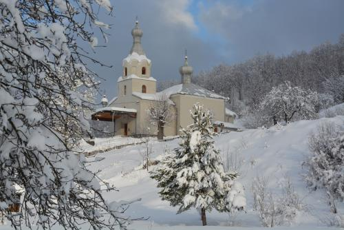 Pravoslávny chrám v zime